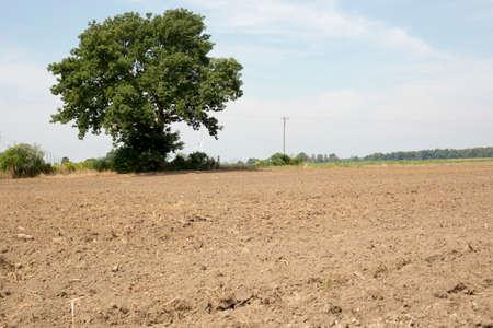 Farm Imagens