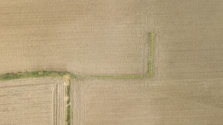 lines on a field viewed from above Фото со стока