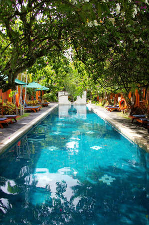 bali: swimming pool