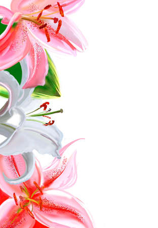 flower border: lily border (watercolor)