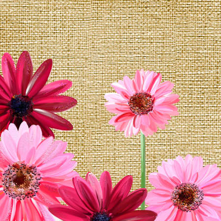 pink painted flowers over canvas texture photo