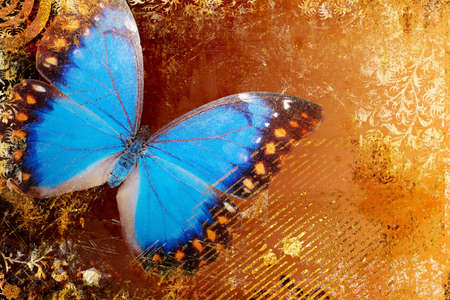artistic: artistic background with blue butterfly