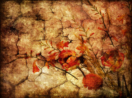 gloomy autumn backgrund photo