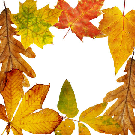 farme: autumn farme Stock Photo