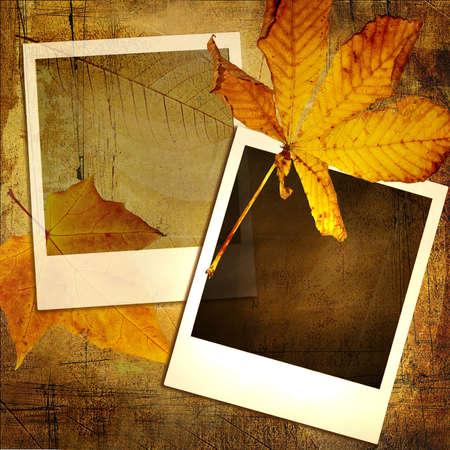 autumn background with polaroid frames photo