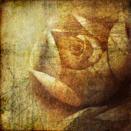 threadbare: retro background with rose Stock Photo