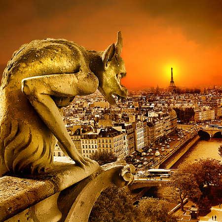 gargouille: coucher de soleil sur Paris-Vue de Notre Dame