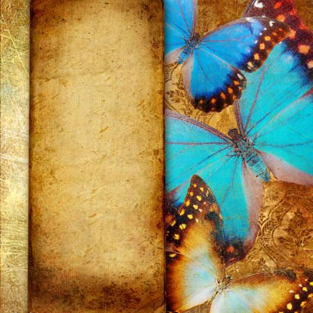decorative vintage paper with butterflies