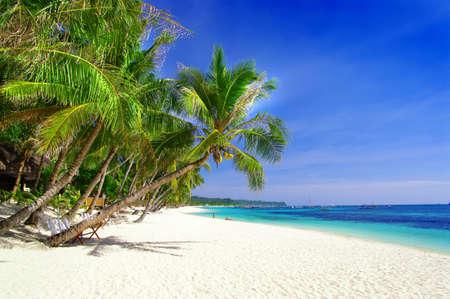 tropical paradise Stock Photo - 4589248