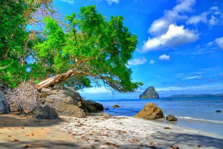 ltropical landscape Stock Photo - 4758399