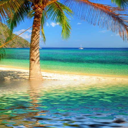 pure tropics Stock Photo - 4758392