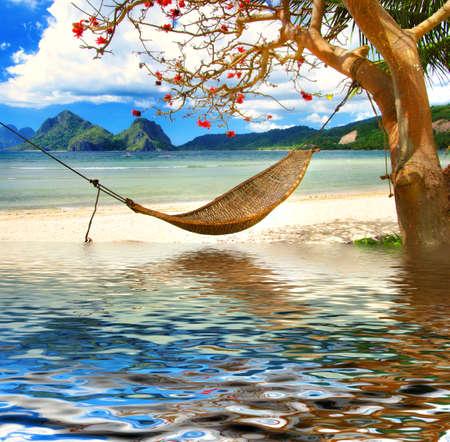 hamaca: tropicales relajarse