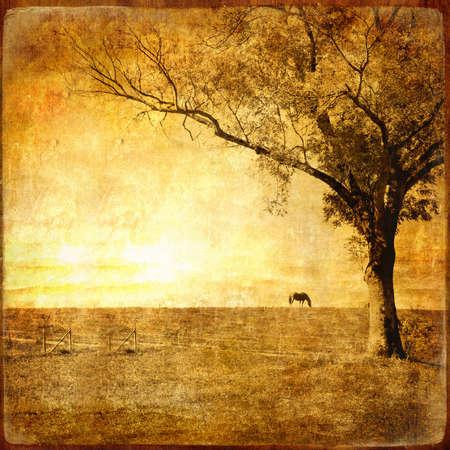 pictorial: golden sunset Stock Photo