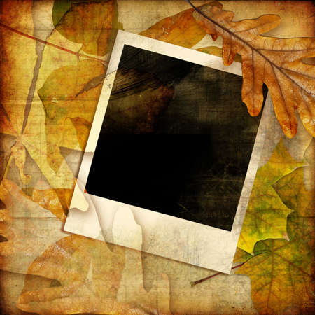 autumn photoalbum with instant frame photo