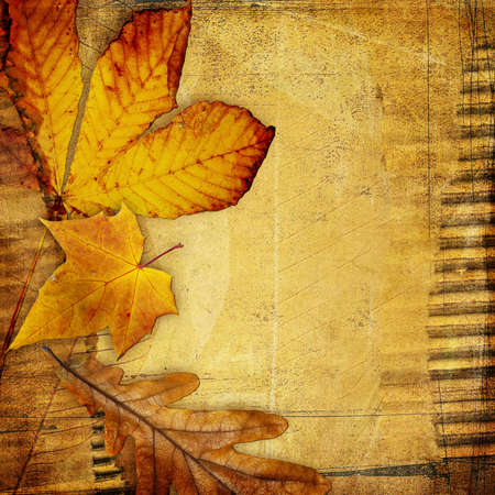 autumn photoalbum with space for text or picture Stock Photo - 5471592