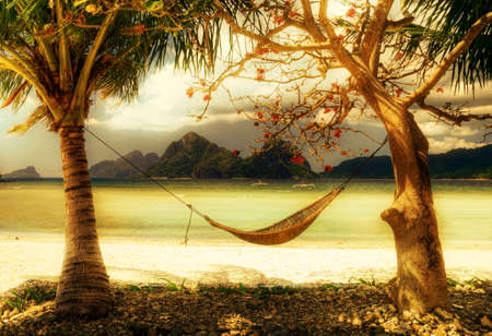 tropical relax -artistic toned picture photo