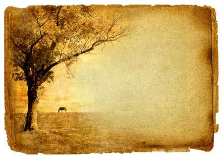 vintage paper with autmn background photo