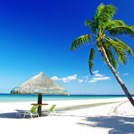 Salón tropical