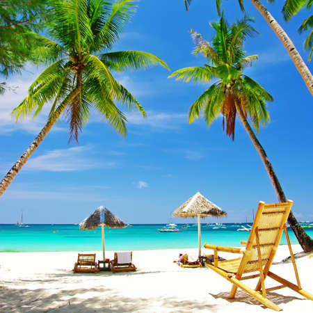 tropical relax Stock Photo - 6894380