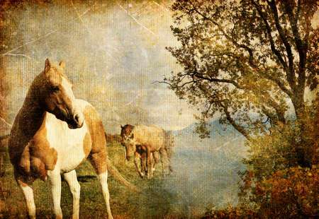 old horse: autumn scenery  - artwork in painting style Stock Photo