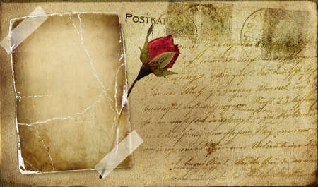 vintage romantic post card with blank frame and rose  photo
