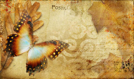 mariposas amarillas: tarjeta de oto�o Vintage con hojas y mariposa  Foto de archivo