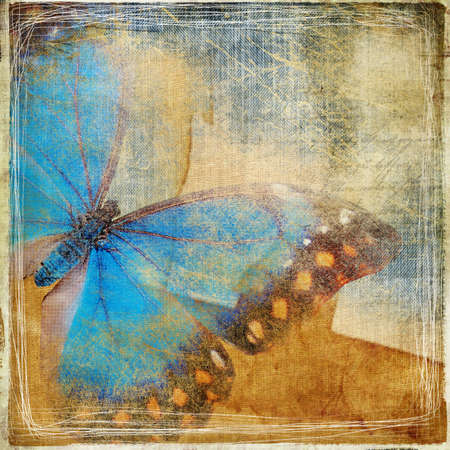 torn jeans: background in grunge style with butterfly