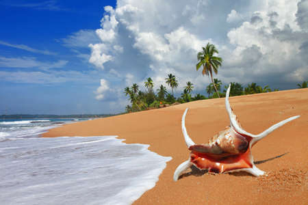 pictorial: pictorial deserted beaches of Sri lanka Stock Photo