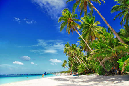beach bar: beautiful tropical scenery Stock Photo