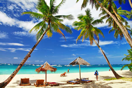 tropical relax - holidays in paradise photo