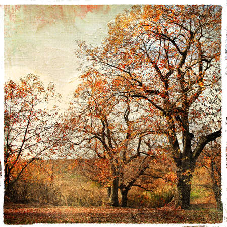 golden autumn - artistic landscape  Stock Photo