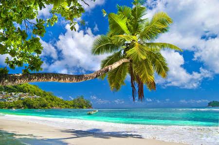 tropisches Paradies - Seychellen, Praslin Standard-Bild