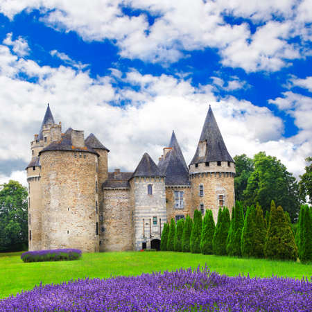 lavander: medieval castles of France, with lavander field Stock Photo