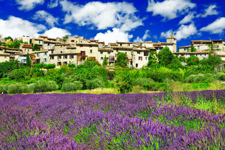 lavander: Saignon village with blooming lavander in Provence