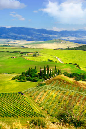 podere: Scenery of tuscany, Val d Orcia. Italy