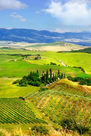 val dorcia: Scenery of tuscany, Val d Orcia. Italy