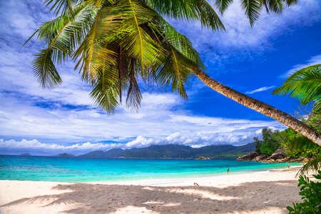 costal: incredible beaches of Seychelles, Mahe