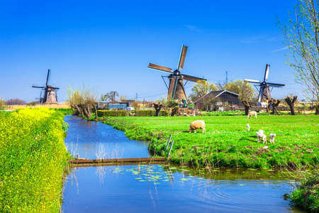 holland landscape: traditional Holland countryside Stock Photo