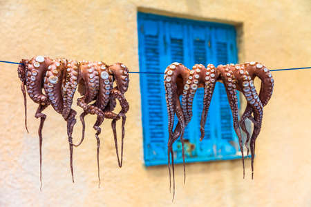 traditional food of Greece. drying octopus 스톡 콘텐츠