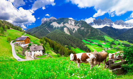 Alps of Italy -scenery of Dolomites countryside