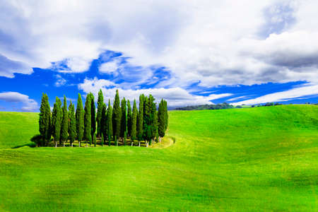 panoramic view: traditional landscapes of Tuscany, Italy
