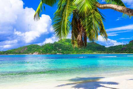 costal: tropical beach scenery Stock Photo