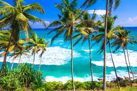 costal: turquoise beautiful wild beaches of Sri lanka
