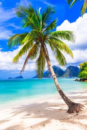 playas tropicales: soledad tropical - playas de Filipinas, Palawan Foto de archivo