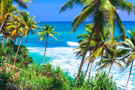 costal: wild beautiful beaches in Sri lanka