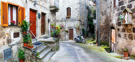 charming streets of old italian villages, Vitorchiano 免版税图像