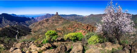 beauty in nature - Roque bentaga in Gran Canaria