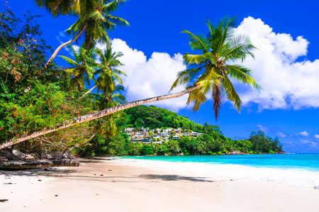 tropical plage paradisiaque - îles Seychelles