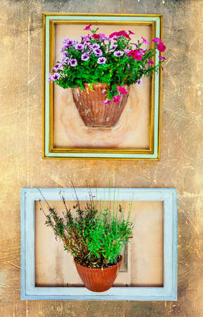 frameworks: floral design - flower pots over the wall Stock Photo
