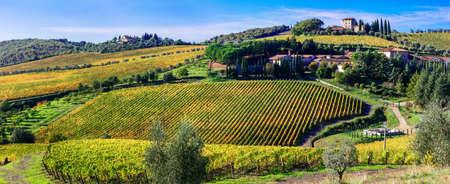 scenry of Tuscany - beautiful wineyards of Chianty region, Italy Stock Photo